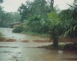 camerun-2001-034