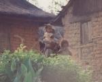 Madagascar-1992-007