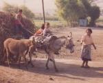 Peru1998-039